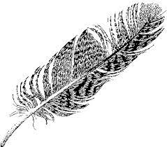 myths symbols sandplay bird symbolism