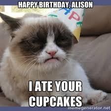 grumpy cat valentines happy birthday alison i ate your cupcakes birthday grumpy cat