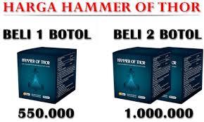 distributor obat hammer of thor di kendari 082282333388