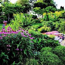 Landscape Design Backyard by 324 Best Garden Landscape Ideas U0026 Tips Images On Pinterest