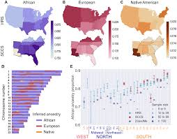 Genetic Maps Of Europe by The Great Migration And African American Genomic Diversity