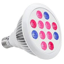 Grow Light Bulb Key Hydroponic Lighting Guide That Ensure Proper Plant Growth