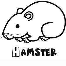 Coloriages à imprimer  Hamster Page  1