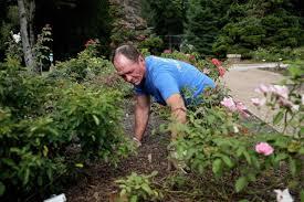 tulsa rose garden transformation revives annual fundraiser scene