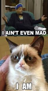 Ain T Even Mad Meme - i ain t even mad meme funny madcat https ashersocrates