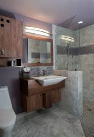 Disabled Bathroom Design 117 Best Accessible Home Designs Images On Pinterest Bathroom