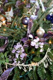 christmas trees and new babies pat layton