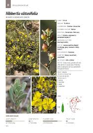 native plant guide new photographic plant guide to native plants of the act released
