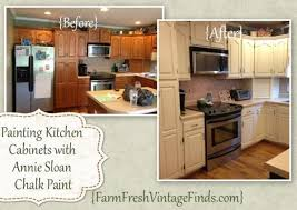 what kind of paint on kitchen cabinets how to paint old oak kitchen cabinets nrtradiant com