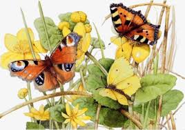 butterfly on the butterfly flowers yellow butterfly png and psd