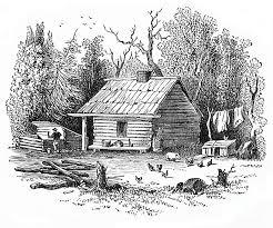 log cabin drawings settler s log cabin 1878 drawing by art mackay