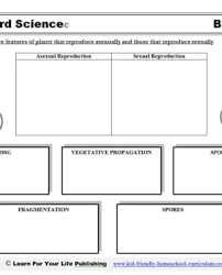 images of abc worksheets free english ks2 collection kindergarten