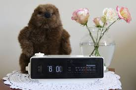 groundhog alarm clock 12 steps pictures