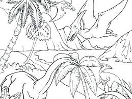 free coloring page of the rainforest tropical rainforest coloring pages rain forest coloring pages free