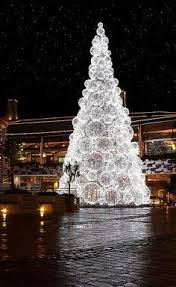 Outdoor Christmas Decorations Sydney by Christmas Lights Believe In The Magic Of Christmas Pinterest