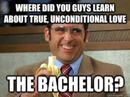 Bachelor Meme - where did you guys learn about true unconditional love the