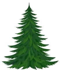 pine tree clipart clipartix