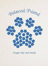 forget me not seed packets seed packets for memorials and funerals bentley seeds