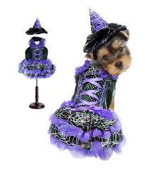 Dog Spider Halloween Costume Halloween Purple Witch Spider Webs Lighted Dog Costume