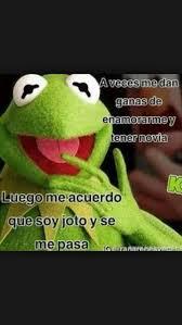 imagenes groseras rana rene 207 best te amo rana rene images on pinterest jokes kermit and frogs
