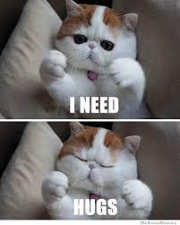 I Need Memes - i need hugs weknowmemes