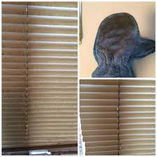 use the dusting mitt wet to clean blinds norwex cleaning