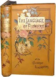 The Language Of Flowers 340 Best The Language Of Flowers Images On Pinterest Language Of