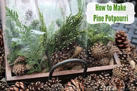 how to make pine potpourri one hundred dollars a month