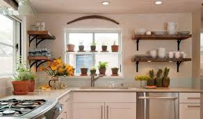 Interior In Kitchen Best Kitchen Plants Plants For Kitchen To Decorate It Balcony