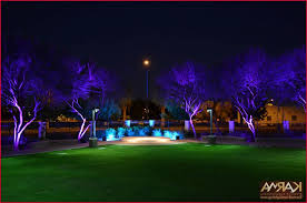 Outdoor Up Lighting For Trees Outdoor Up Lighting For Trees Best Of Karma Event Lighting For