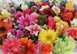 flowers in bulk bulk artificial flowers best of 100 cheap silk flowers bulk