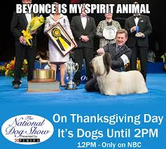 thanksgiving with the national show a bit about a lot