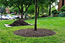 Landscaping Wood Chips by Mulch U0026 Wood Chips Angie U0027s List