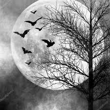 halloween stock background halloween spooky night background u2014 stock photo nikoniano 8281080