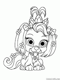 coloring page puppy chamomile
