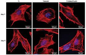 guided bone regeneration guided tissue regeneration gtr guided bone regeneration gbr