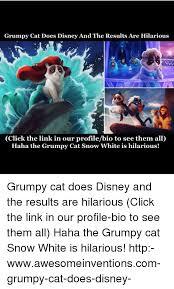 Grumpy Cat Snow Meme - 25 best memes about grumpy cat snow grumpy cat snow memes