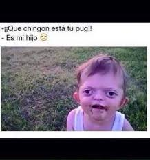 Spanish Memes - 115 best mexican spanish memes funny images on pinterest ha ha