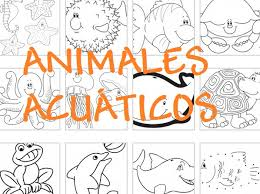 imagenes animales acuaticos para colorear dibujos gratis para colorear y pintar de animales acuáticos peces