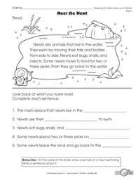 printables main idea and details worksheets ronleyba worksheets