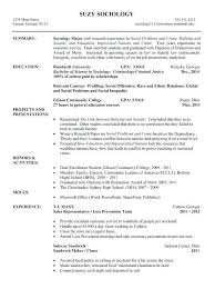 chronological resume exles sles of chronological resumes paso evolist co