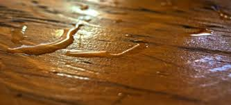 5 tips to protect your hardwood floors and plumbing from winter
