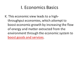 The Economic View From The Economics And The Environment Ppt Video Online Download