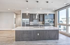 Contemporary Walnut Kitchen Cabinets - contemporary kitchen with pendant light u0026 one wall in denver co