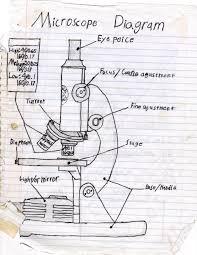 microscope diagram by redtarkin on deviantart