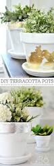 best 25 terracotta pots ideas on pinterest painting terracotta