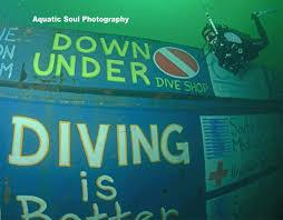 Alabama snorkeling images Down under dive shop jpg
