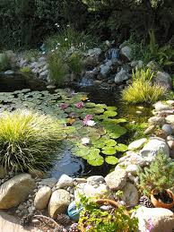 Diy Backyard Ponds Diy Backyard Pond Decoration