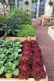 104 best images about gardening on pinterest gardens the secret