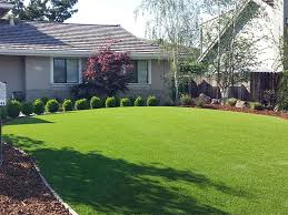 Florida Front Yard Landscaping Ideas Grass Turf Wahneta Florida Landscape Photos Front Yard Landscape